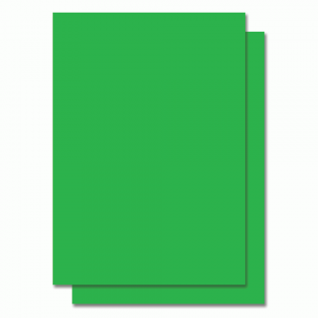 Fluorescent Color Label Sticker - A4 size - 100 sheets - Green (Item No: C01-05 GR)